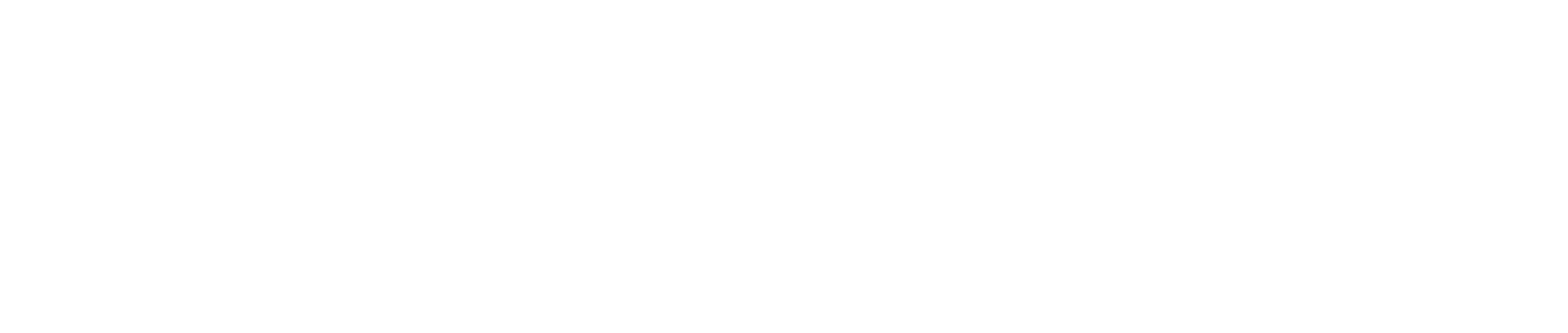Logo DirectoSanté blanc